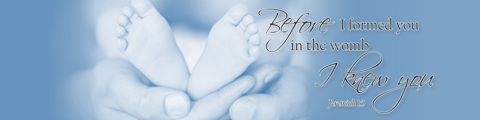 Before I formed you in the womb, I knew You. Iowa Pro-Life Action